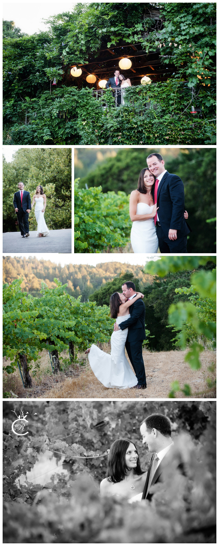 Gorgeous winery wedding portraits • Carrie Richards Photography