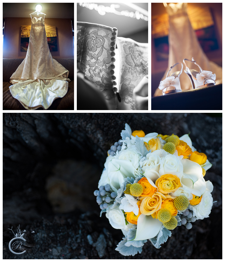 Dramatic wedding dress photos