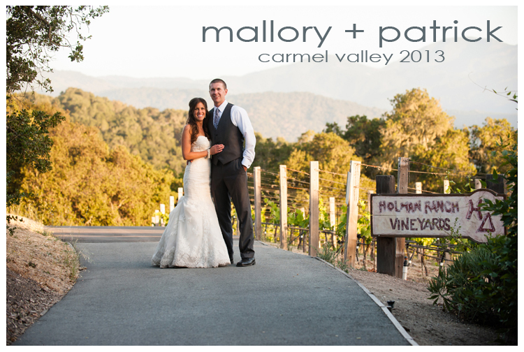 Holman Ranch Vineyards Wedding Photography