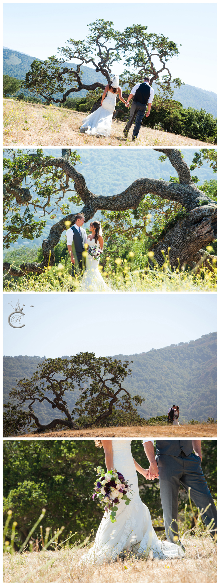 Outdoor Wedding Portraits at Holman Ranch